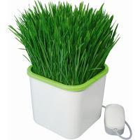 """Проращиватель семян  """"Здоровья КЛАД"""" (20х17х10см)с гидропонной установкой"""