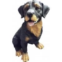 М/Собака Ротвейлер сидит средний F476